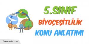 5.Sınıf 6.Ünite 1.Bölüm Biyoçeşitlilik Konu Anlatımı